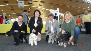 Hier alle stolzen Frauchen mit Ihren V1 Hunden!