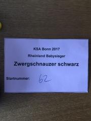 Babysieger Bonn