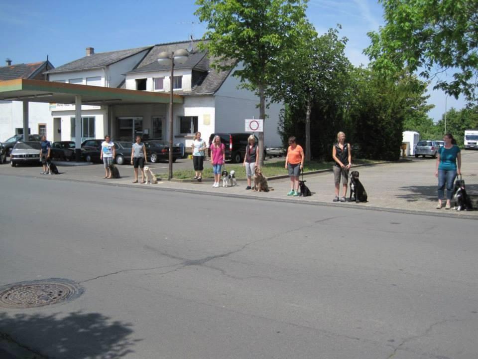 alle Mann Sitz, bevor es über die Straße geht